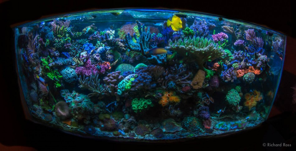 FTS Aug 2014-2183